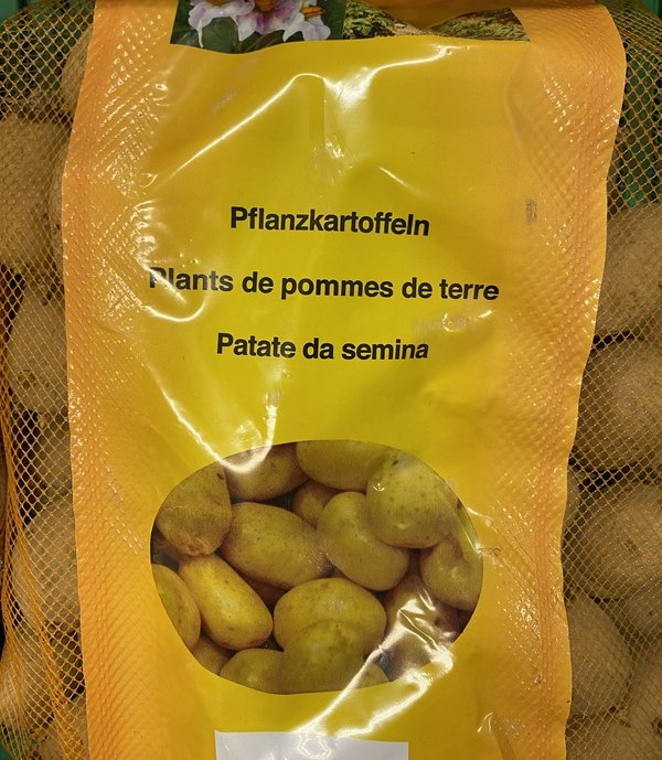 PATATE SEMINA 5KG DESIREE'ROSSA S.P.